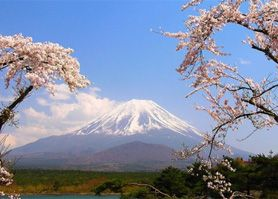 Giappone, tour da Tokyo