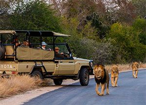 Tour Sudafrica - Tour Voyager South Africa